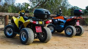 Off Road Buggy - 26368 selections