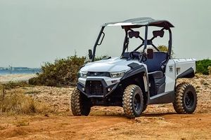 Off Road Buggy - 58265 customers