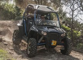 Off Road Buggy - 53429 options